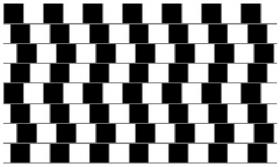 だまし絵 直線