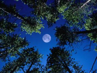 潜在意識と月の関係
