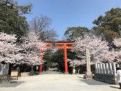鏡作坐天照御魂神社にチャネラー・鶴田裕子さんと行ってきました。女神三谷火の神様