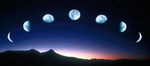 月のリズムと生命の樹で願いを叶える