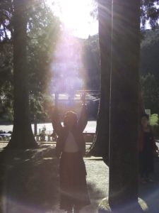 光エネルギーワーク