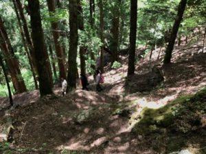 玉置神社山道