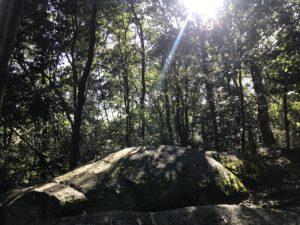 天香久山・月の誕生石